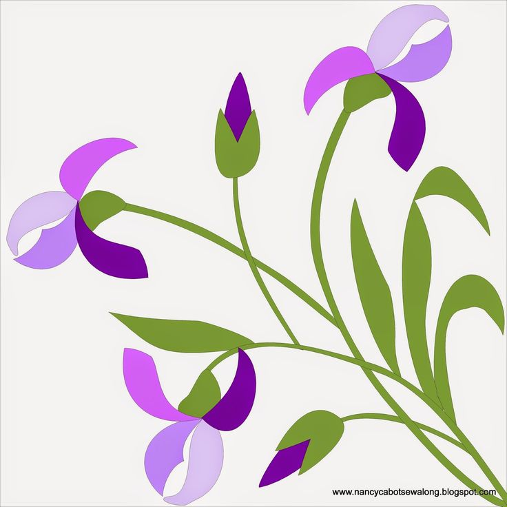 254 best iris images on pinterest irises flowers and painting moore about nancy iris quilt block pronofoot35fo Image collections