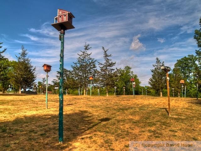 Birdhouse City, Picton, Ontario    How to build nice