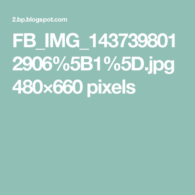 FB_IMG_1437398012906%5B1%5D.jpg 480×660 pixels