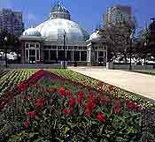 Allen Gardens Conservatory! Where I'll be married!