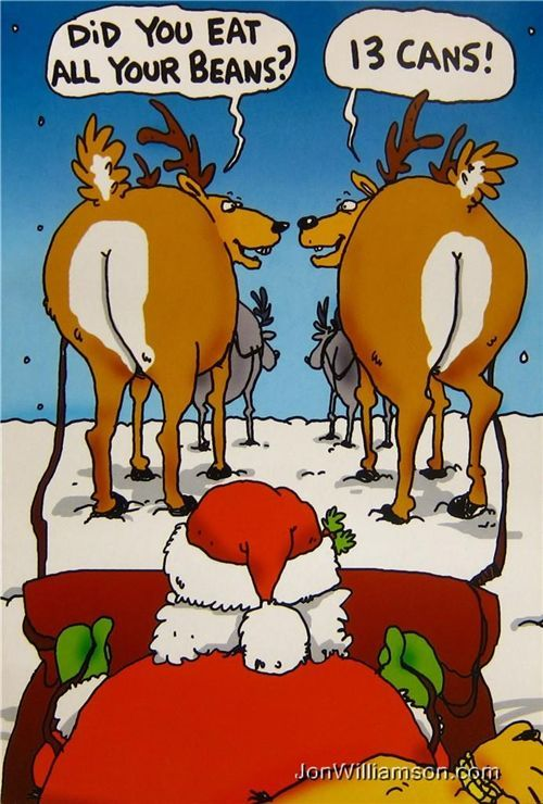 Christmas Humor: The reindeer are ready for flight, but is Santa?