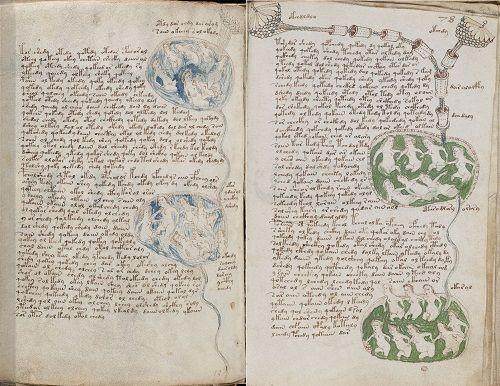 El Manuscrito Voynich, aún hoy no descifrado.