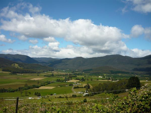 The fertile rural country-side of Gunns Plains, south of Ulverstone.  Article & photo by Michelle Kneipp Pegler.