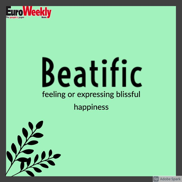 Word Of The Day Beatific Meaning Feeling Or Expressing Blissful Happiness Did You Know Beatific Which Derives From Latin Word Of The Day Feelings Words