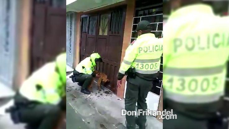 Policia rescata a un perro envenenado, Colombia