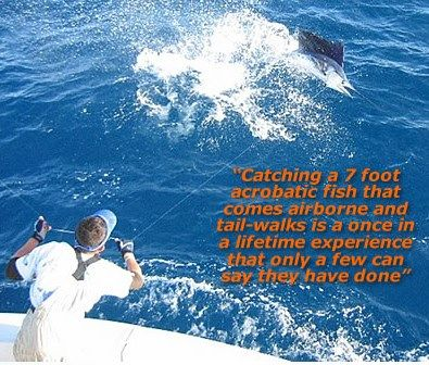 Private Miami fishing charter will offered you without paying any maintenance costs of charter ownership. The main aim of Miami charter give a great sport fishing trip and ends with a memorable day. www.miamicharterb... #Miami Deep Sea Fishing Charter #Miami Fishing Charter #Miami Offshore Fishing Charter #Miami Sailfish Charter #Miami Sport Fishing Charter