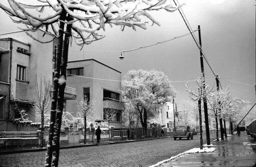 Winter in 1941 on a street in Cotroceni