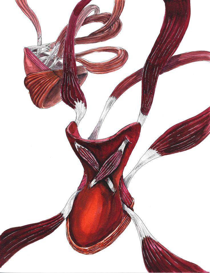 Illustration of Anatomy shoe - Jintae Eom