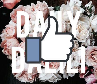 Do you like Dalii design on Facebook?