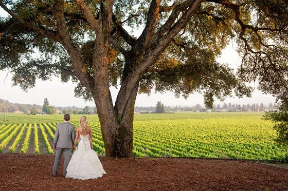 Incredible Wedding Venues In Northern California 21 According Awesome
