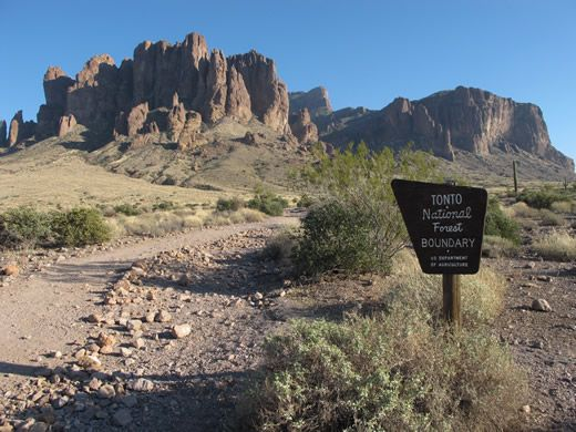 """Tonto National Forest. Fifth largest forest in the United States and the most-visited """"urban"""" forests."""