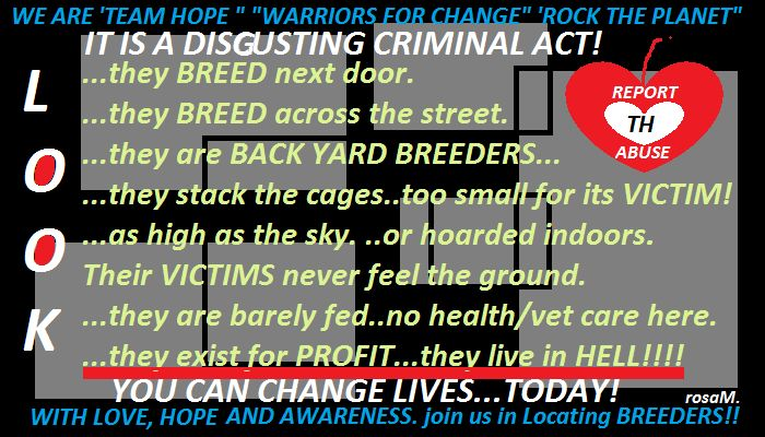 """HELP US HELP ANIMALS....WIN!!! https://www.facebook.com/pages/League-of-Hope-International-HOPE-2014-Protest-Against-Abuse/354790664620147?fref=ts  ABUSERS OF ANIMALS-PEOPLE-PLANET ARE:  dis·gust·ing /disˈɡəstiNG/  adjective : disgusting arousing revulsion or strong indignation.  """"he had the most disgusting rotten teeth"""" synonyms: revolting, repellent, repulsive, sickening, nauseating, stomach-churning, stomach-turning, off-putting, unpalatable, distasteful, foul, nasty, vomitous;"""