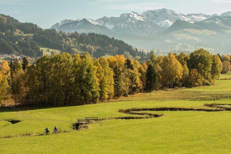 Poster & Download: Allgäu Wald Wiese Bach Berge Kategorien: landschaften, allgäu, wald, wiese, bach, berge