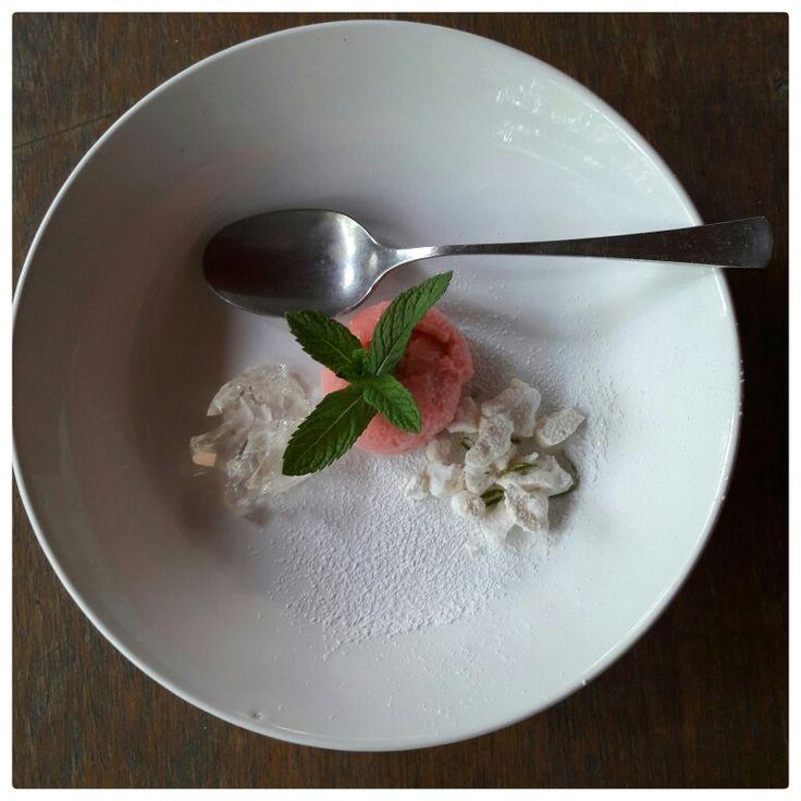 Sorbetto al rabarbaro, meringhe e gelatina ai fiori di sambuco @dino