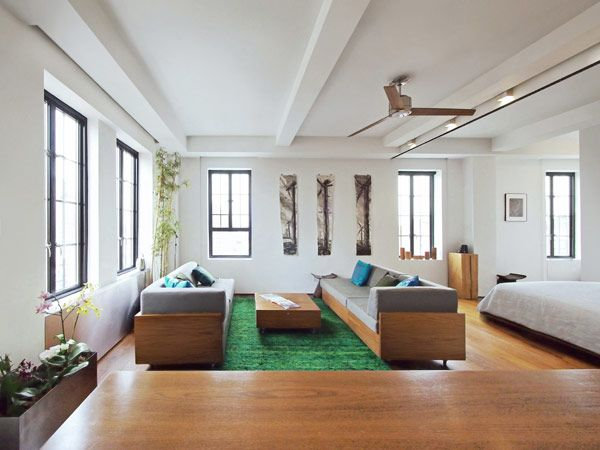 Creative and Flexible Apartment Coping with the Frenzy of New York City