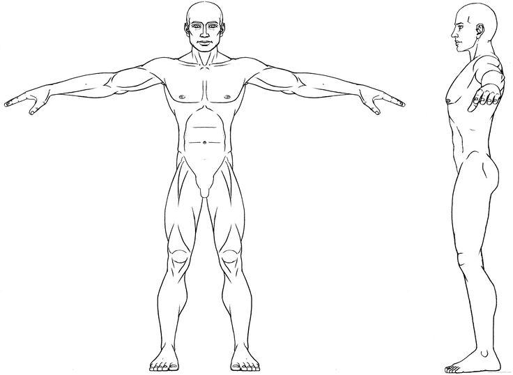 body ref drawing