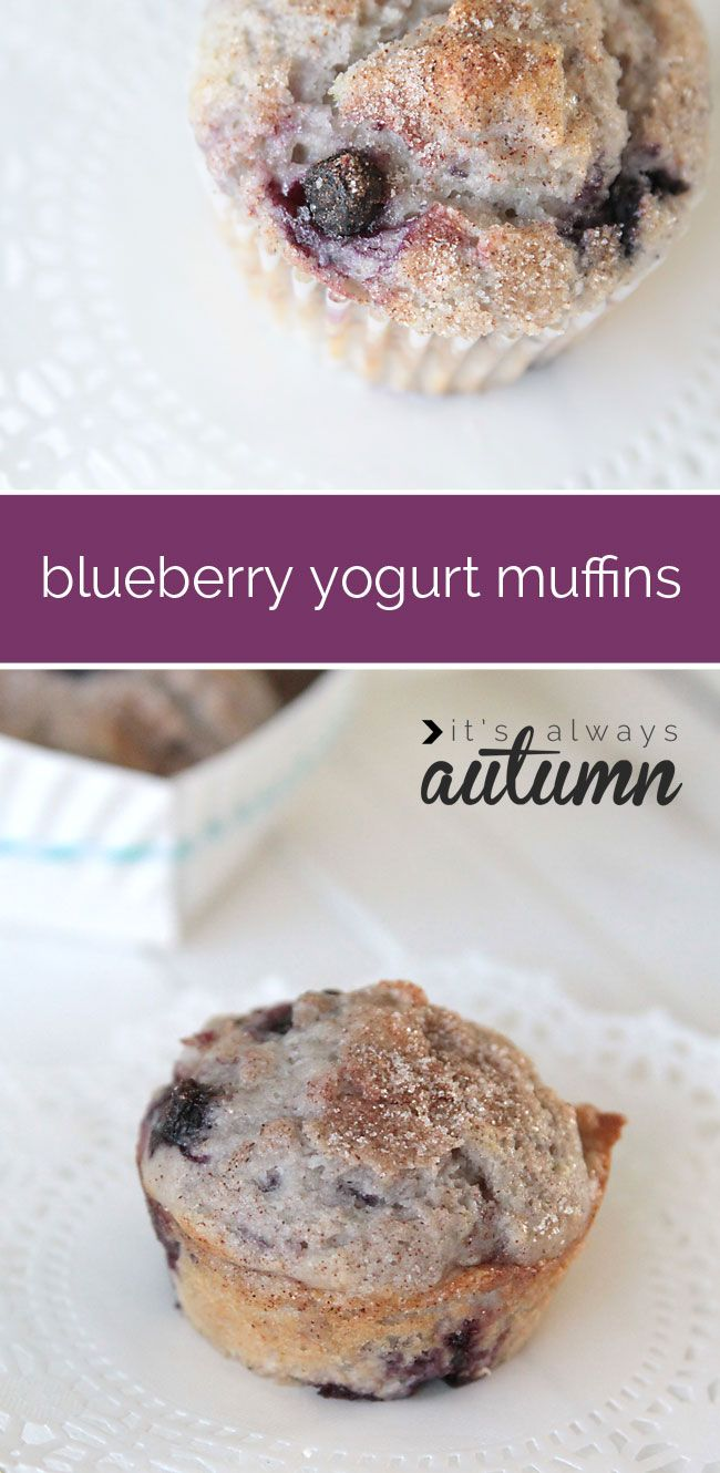 ... Blueberries, Greek Yogurt Muffins Recipe, Healthy Greek Yogurt Recipes