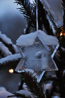 LILJOR OCH TULPANER: En vintertripp...