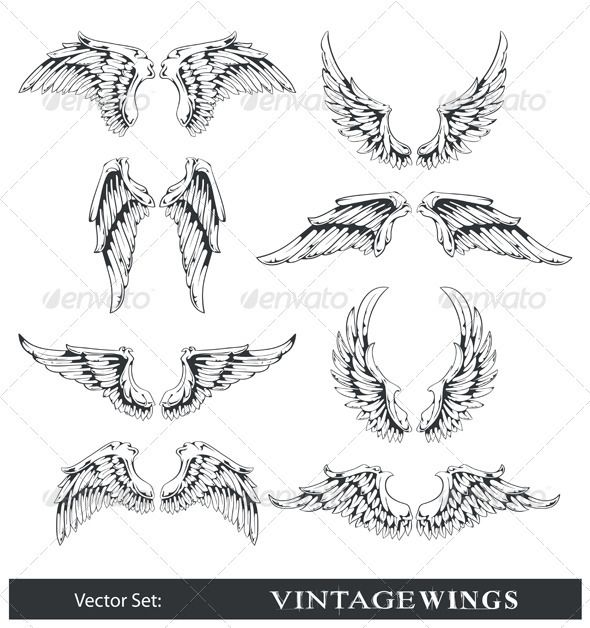Vector set of wings — Vector EPS #vintage #decoration • Available here → https://graphicriver.net/item/vector-set-of-wings/405089?ref=pxcr