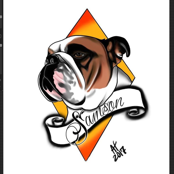 Getting pretty hyped to do this tribute tattoo of Samson on @homdini ! Gonna be so much fun ! #jerseycitynj #bodyartsouljc #bodyandsouljc #jerseycity #ipadproart #procreateart #thankful #tattoodesign #tattoolife #tattoolove #tattoolover #tattooart #tattooartist #tattooartwork #dogtattoo #bulldogtattoo #neotraditional #neotraditionaltattoo #pettattoo