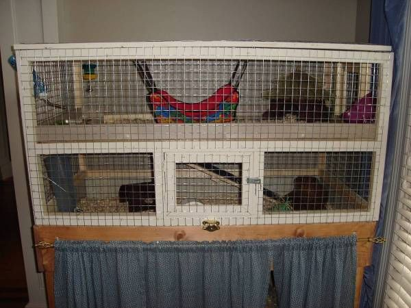 9 best images about guinea pig cage ideas on pinterest for Diy playpen for guinea pigs
