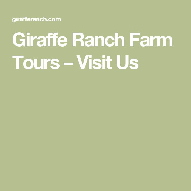 Giraffe Ranch Farm Tours – Visit Us