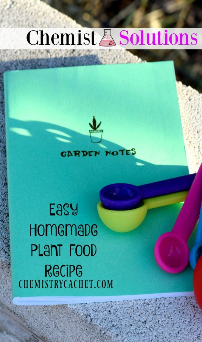 how to make a homemade hydroponic system