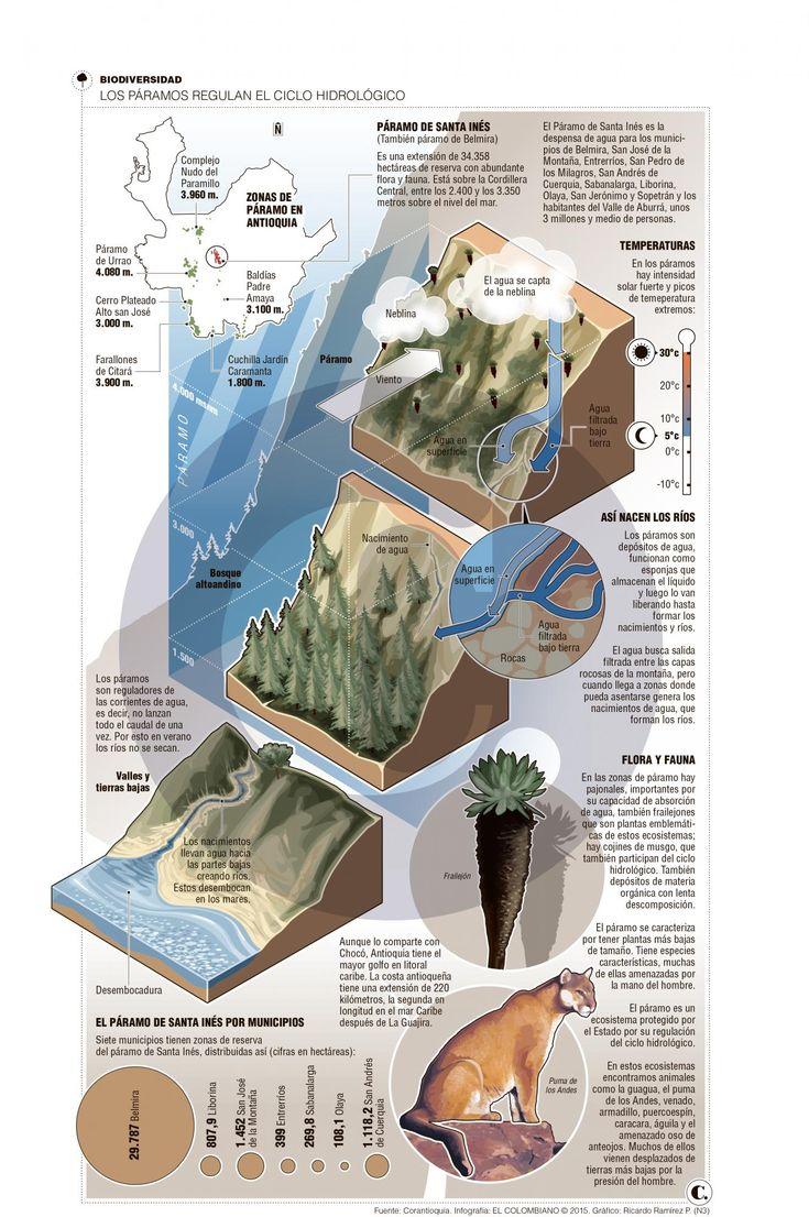 Los páramos regulan el ciclo hidrológico