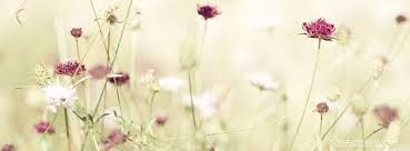 Image result for facebook cover photos, spring