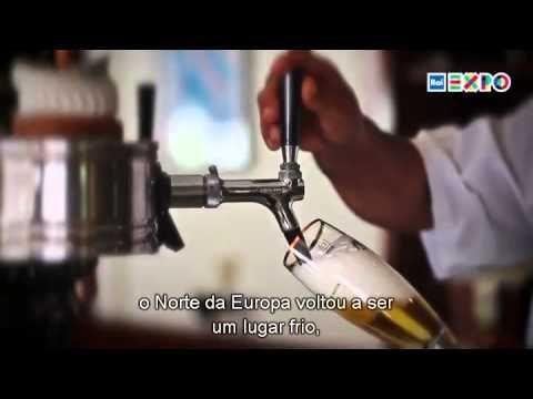 Brindaremos com champanhe inglês? - O clima está mudando, e os efeitos podem ser percebidos nos campos e nas garrafas #raiexpo #expo expomilano #expo2015 #worldsfair #milan #Itália #brazil