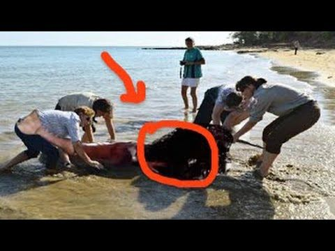Real Mermaid Found Alive ➨ Real Mermaid Caught on Camera