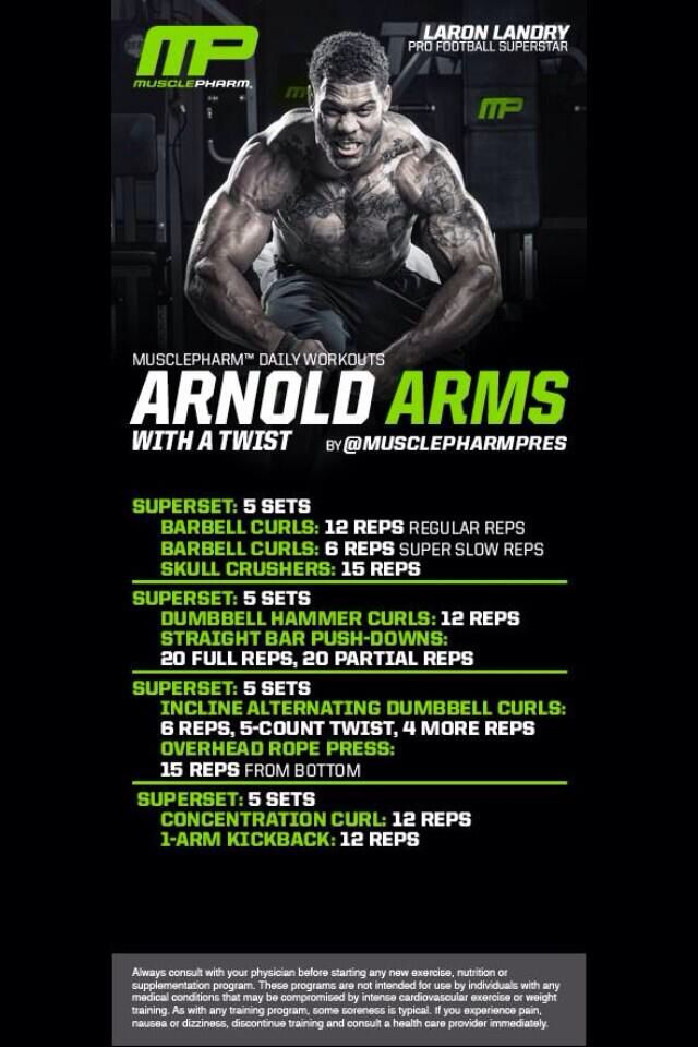 25 best ideas about arnold workout plan on pinterest arnold arnold arms malvernweather Image collections
