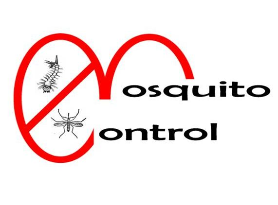 Call @ 9999787571. Trying to get rid of mosquitoes??? Mourier pest control gets its superior and efficacious mosquito control service for you. Say bye-bye to mosquitoes and live safely.