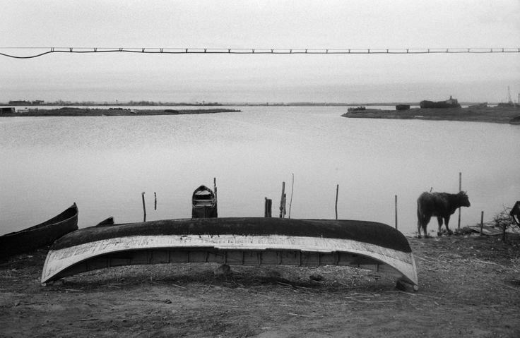 Josef Koudelka, 1994. Romania. Danube delta. Sulina.