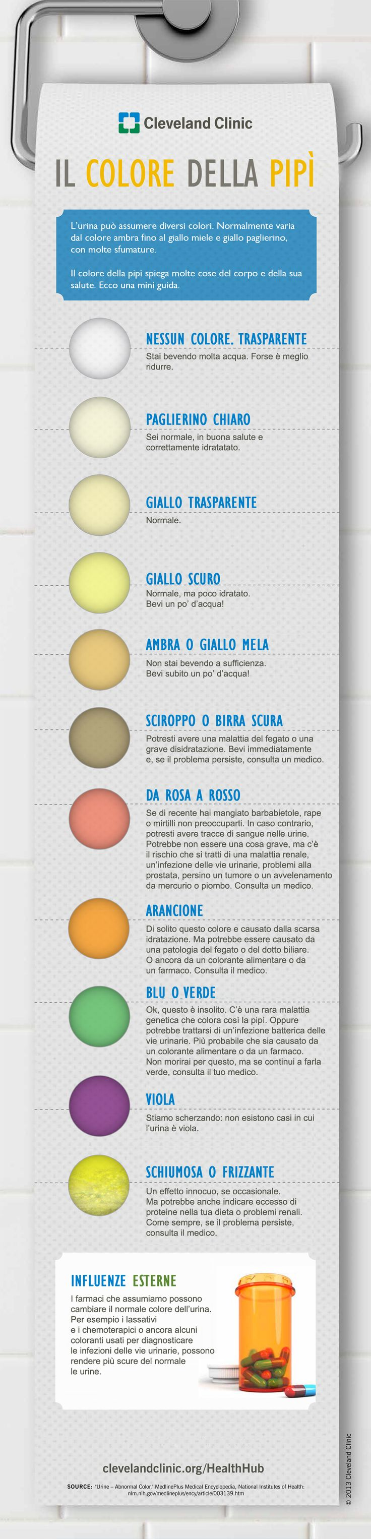 Il colore della pipì - Focus.it #infografica