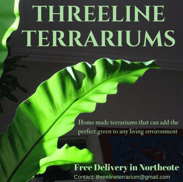 ThreeLineTerrariums | Homemade terrariums that adds the perfect green to any home living environment | Contact us via threelineterrarium@gmail.com