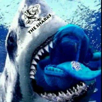 Natal Sharks rugby