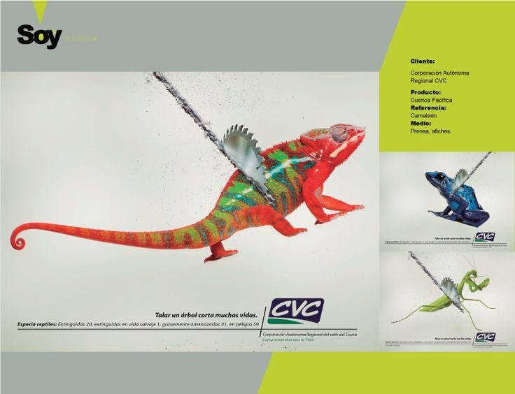 Cliente: Corporación Autónoma Regional CVC  Producto: Cuenca Pacífica Referencia: Camaleón Medio: Prensa, afiches.