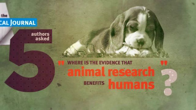 Animal Testing Statistics - for products that are not tested on animals - please take a look at our marketplace http://EthicalStores.com