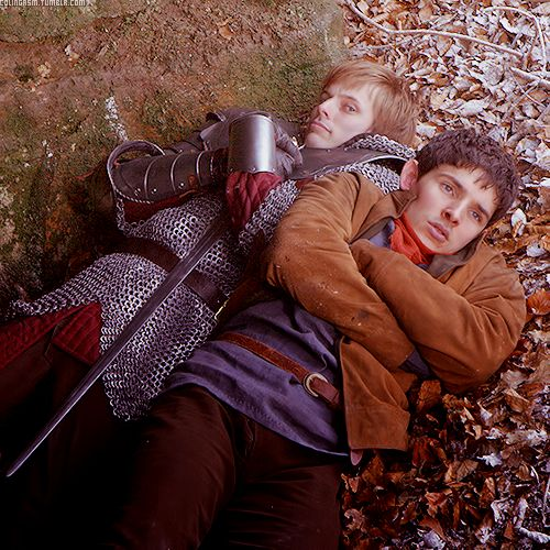 Well, Merlin and Arthur look comfy, perhaps Arthur more than Merlin!  These two are so adorable! I love them <3