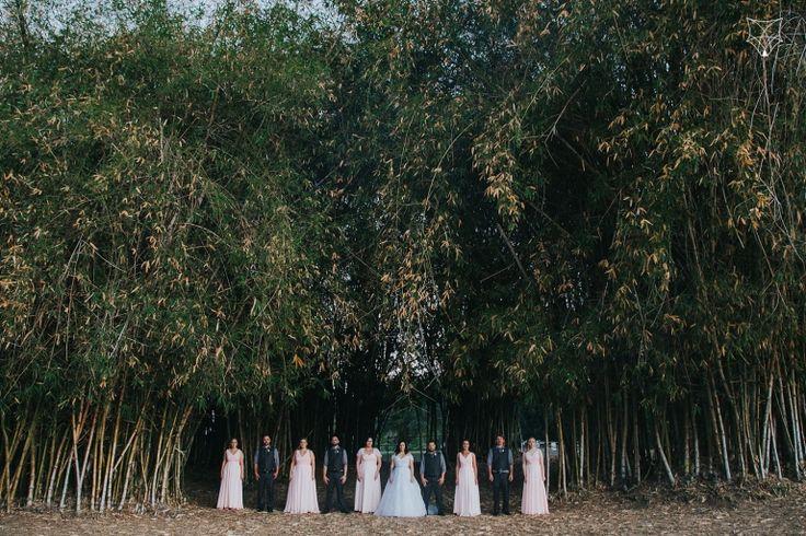 Amanda + Tim   Gold Coast botanic gardens wedding   White Fox Studios