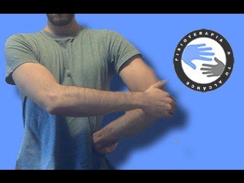 Supraespinoso e Infraespinoso, estiramientos y anatomía para el hombro / Fisioterapia a tu alcance