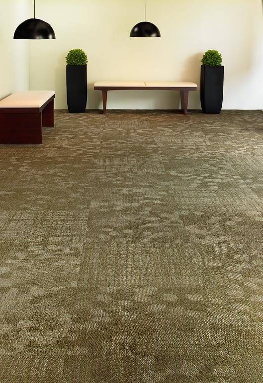 1000 Images About Office Carpet Ideas On Pinterest