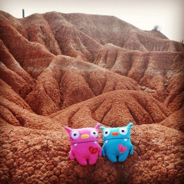 Nuestros monstricos en el Desierto de la Tatacoa, Colombia. Foto tomada por una de nuestras clientas de Instagram @alhewen