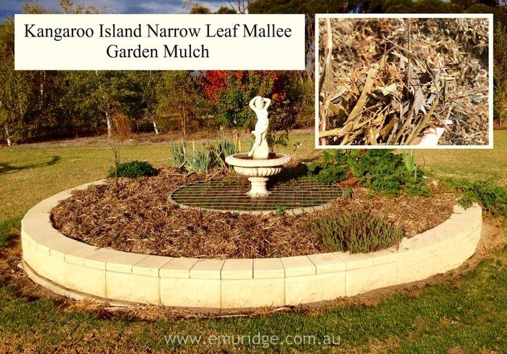 Kangaroo Island Narrow Leaf Mallee Mulch FOR SALE for your Garden | Emu Ridge