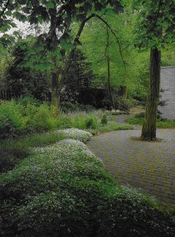 Autumn Garden Design: Oehme-Van Sweden