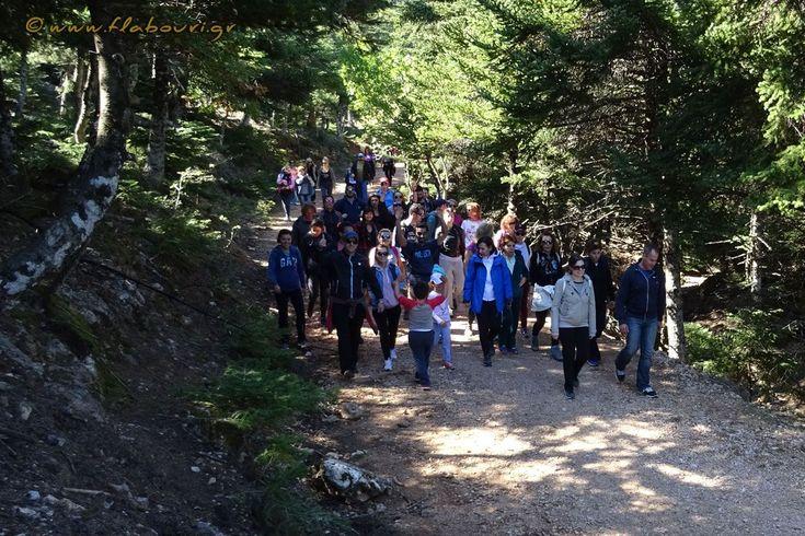 Πεζοπορική βόλτα για φυσιολάτρες  Σάββατο 14 Οκτωβρίου 2017