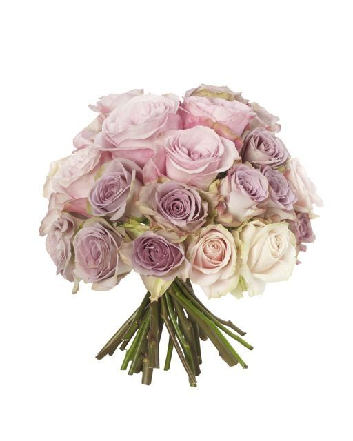 Antique Rose Knot - Sweet Avalanche Roses, Memory Lane Roses, Amnesia Roses and Glam Girl Roses.