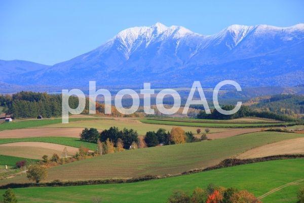 美瑛の丘と雪化粧する大雪山