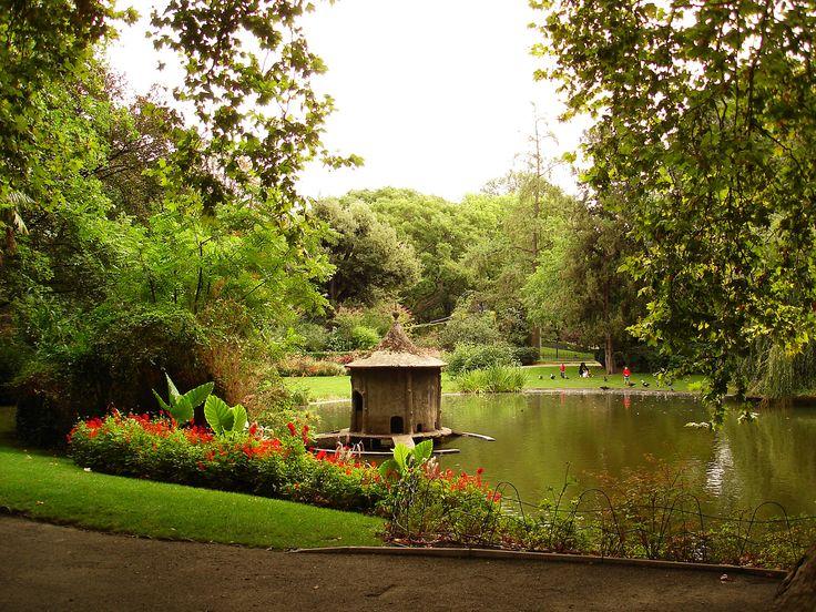 Jardin des plantes 5 me m tro gare d 39 austerlitz for Achat plantes jardin en ligne